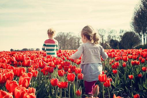 Girls, Children, Tulips, Netherlands, Spring, Nature
