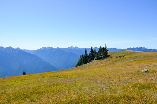 Usa, America, Washington, Hurricane Ridge
