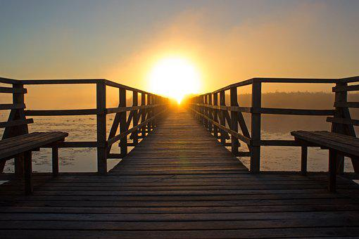 Sunrise, Light, Sun, Web, Nature Conservation