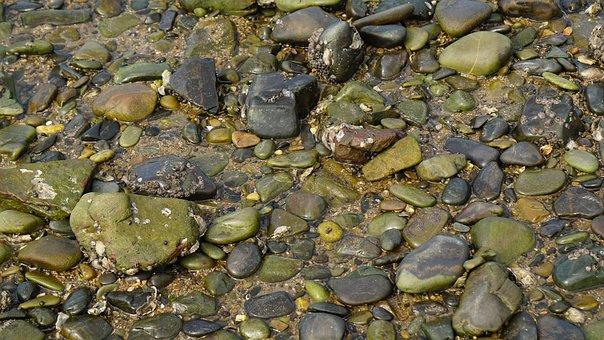 Sea, Gravel, Boulder, Floor, Organization, Small Stones
