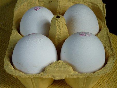 Egg, Egg Carton, Egg Box, Food, Chicken Eggs