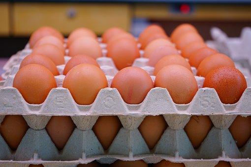 Egg, Chicken Eggs, Egg Carton, Egg Packaging, Egg Box