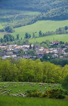 Spring, The Countryside, Sheep, Herd, Pasture, Hamlet