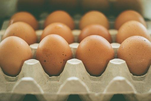Eggs, Carton, Food, Healthy, Protein, Organic