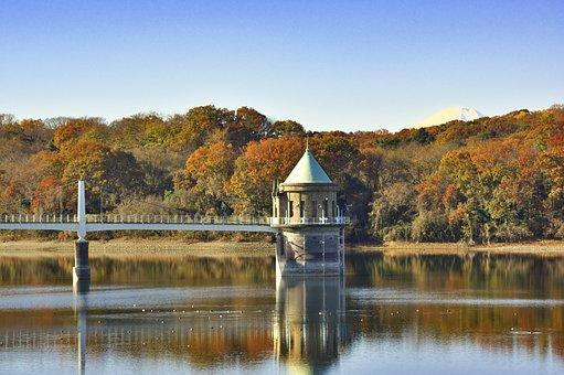 Japan, Reservoir, Intake Tower, Autumnal Leaves