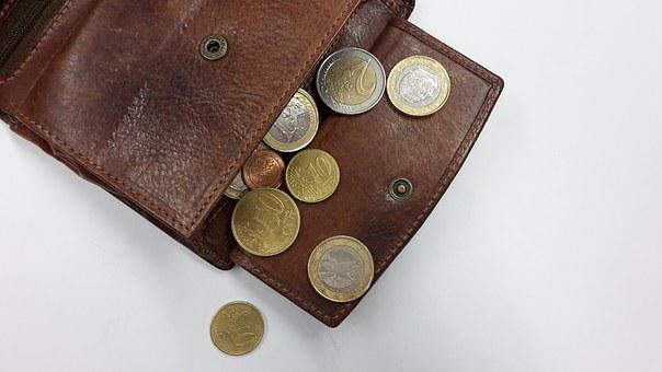 Purse, Coins, Money, Euro, Leather Purse, Currency