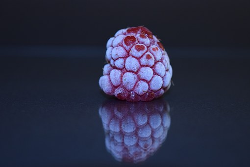 Raspberry, Frozen, Frosted, Close, Mirroring