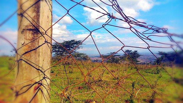 Fence, Nairobi, Kenya