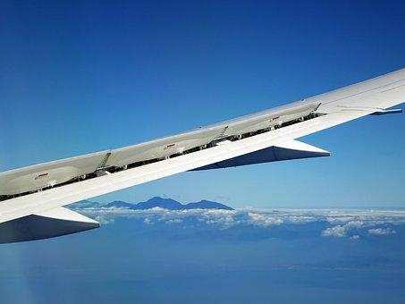 Airplane, Landing, Wing, Blue Sky, Cloud, Plane