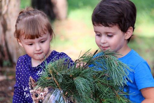 Kids, Vase, Boy And Girl, Pine, Branch, Park