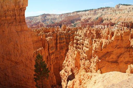 United States, Canyon, Nature, Travel, Western