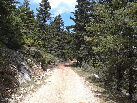 Mountain, Trail, Dirt Road, Forest, Greece