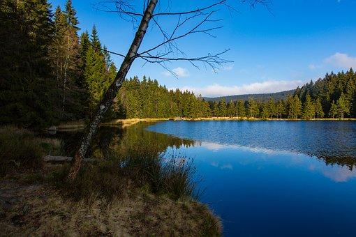 Lake, Summer, Holiday, Water, Fish, Badesee, Mirroring