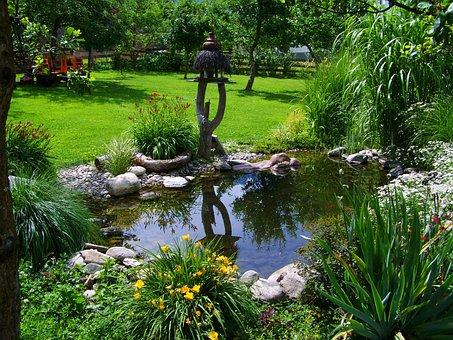 Garden Pond, Small Pond, Garden