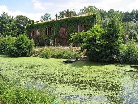 Green, Vegetation, Idyllic, Quiet, France, Side Arm