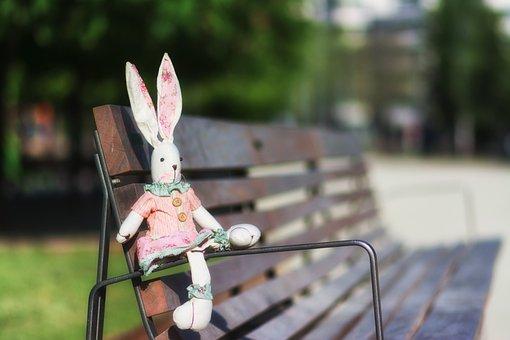 Rabbit, Animals, Pet, The Children, Toys, Teddy
