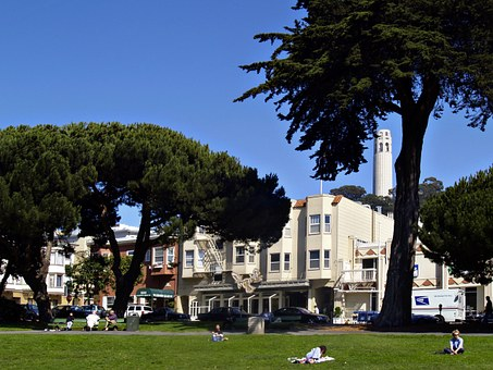 San Francisco, City Park, Church, Buildings, California