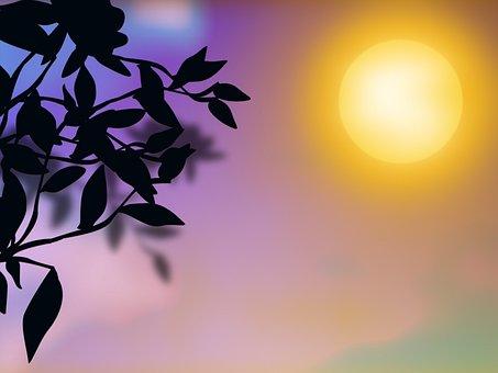 Graphics, Sunset, Purple, Nature, Autumn Leaves