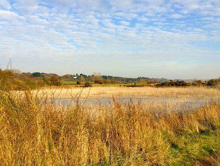 River, Orwell, Landscape