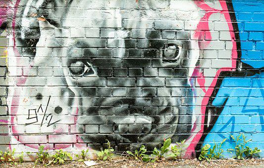 Dog, Mural, Grafitti, Artists, Art, Painting, Wall