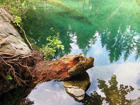 Lake, Nature, Wood, Mood, Lake Cresta, Idyllic