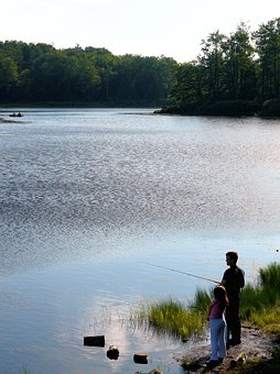 Fishing, Daughter, Father, Lake, Child, Girl, Summer