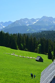 Tatry, Buried, Top View, Landscape, Sunny Day