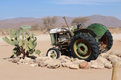 Tractor, Tractors, Oldie, Scrap, Mature, Cactus, Sand