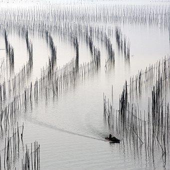 Travel, Fishermen, River, Xiapu, China