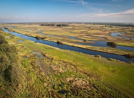 Biebrza, Narew, Pool, Marsh, Estuary, River