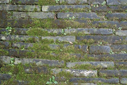 Ground, Brick, Moss