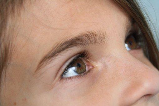 Eyes, Brown, Girl, Look, Focus, Face, Portrait