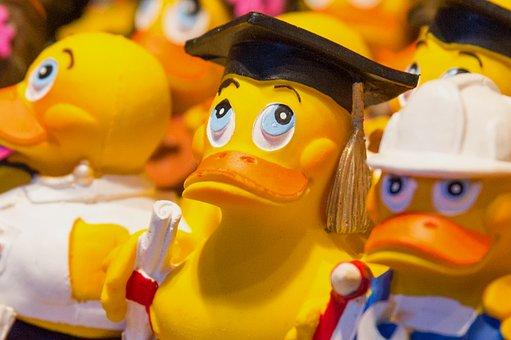 Bath Duck, Duck, Plastic, Rubber Duck, Quietscheente