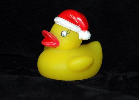 Rubber Duck, Bath Duck, Squeak Duck, Duck, Nicholas