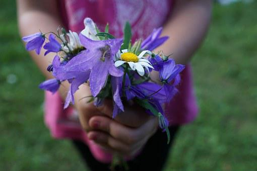 Flowers, Strauss, Purple, Hands, Child, Give, Gift