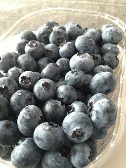 Bilberry, Berries, Fruit, Blueberries, Jagoda, Nature