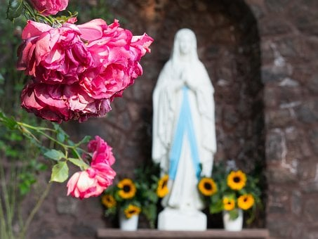 Rose, Maria, Madonna, Mother Of God, Christianity