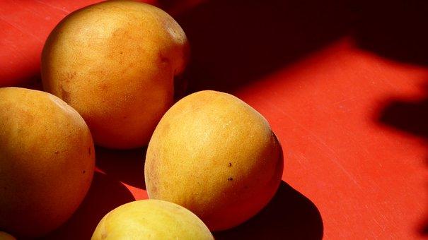 Apricots, Fruit Rot, Orange, Sweet, Ripe, Juicy