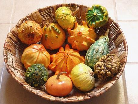Decorative Squashes, Pumpkins, Dried, Painted, Autumn