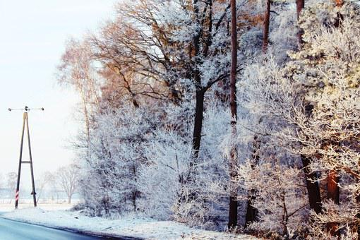 Strommast, Road, Wintry, Winter, Landscape, Snow, Snowy