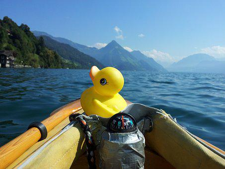 Duck, Bath Duck, Rubber Duck, Squeak Duck