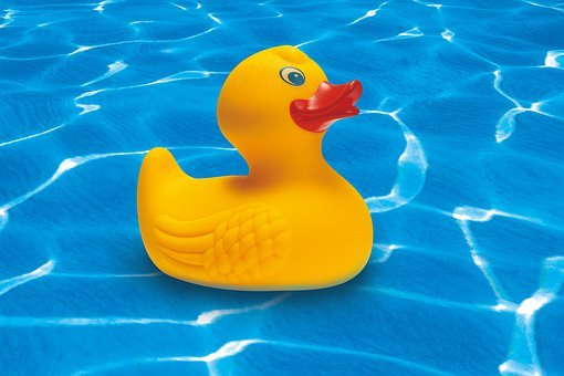 Rubber Duck, Squeak Duck, Yellow, Toys, Toy Duck