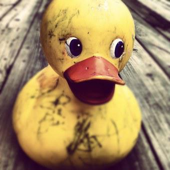 Rubber Duck, Toy, Yellow, Duckling, Baby, Cute
