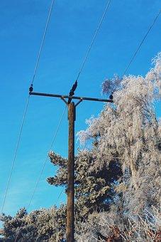 Strommast, Wintry, Winter, Landscape, Snow, Snowy
