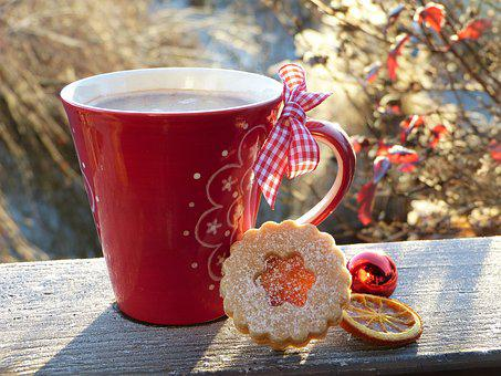Cup, Red, Cookie, Hoarfrost, Wintry, Out, In The Free