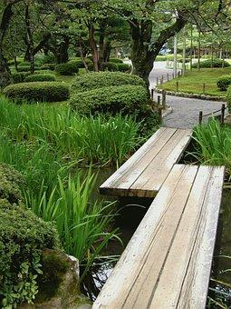 Japan, Kanazawa, Park, Garden, Bridge, Tree
