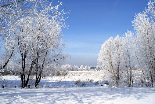 Winter, Landscape, Snow, Nature, Sunny Day, Cold