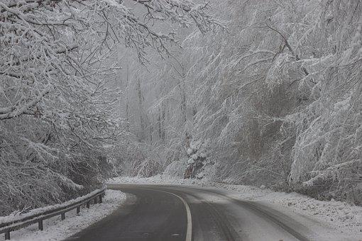 Tree, Snow, Winter, Road, Curve, Dangerous, The Return