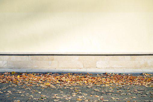 Blank, Wall, Leaves, Autumn, Fall, Season, Leaf