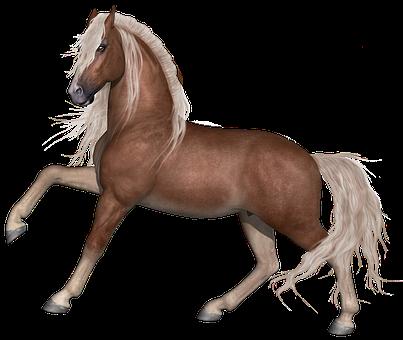 Horse, Stallion, Animal, Farm, Equine, Equestrian, Mane